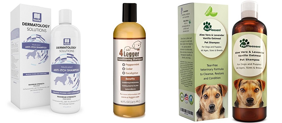Antifungal Shampoos for Dogs